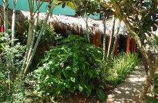 Hotel Kari Beach Hotel Las Terrenas Dominikanische Republik (Foto)