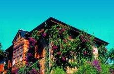 Hotel Begonville Side Türkei (Foto)