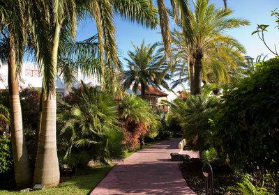 Hotel San Jorge Hacienda Playa De Los Cancajos Spanien (Foto)