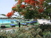 Ghazala Beach / Village
