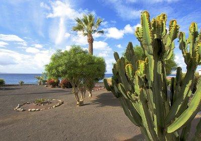 Hotel Iberostar Lanzarote Park Playa Blanca Spanien (Foto)
