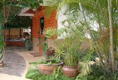 Patong Resort & Garden Wing